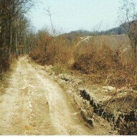 Put Crkvište Novsko brdo